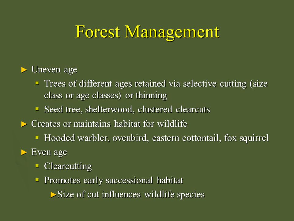 Forest Management ► Uneven age  Trees of different ages retained via selective cutting (size class or age classes) or thinning  Seed tree, shelterwo