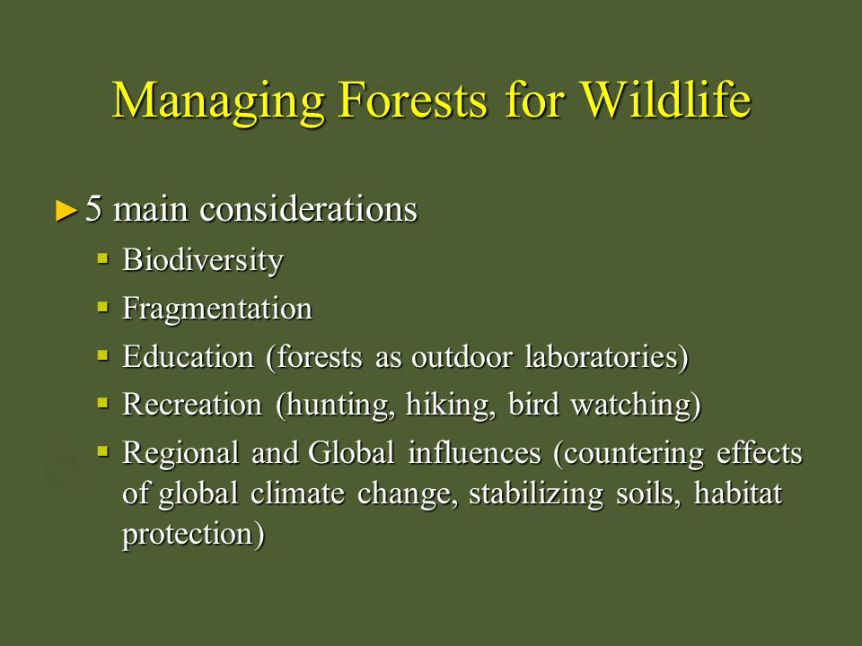 Managing Forests for Wildlife ► 5 main considerations  Biodiversity  Fragmentation  Education (forests as outdoor laboratories)  Recreation (hunti