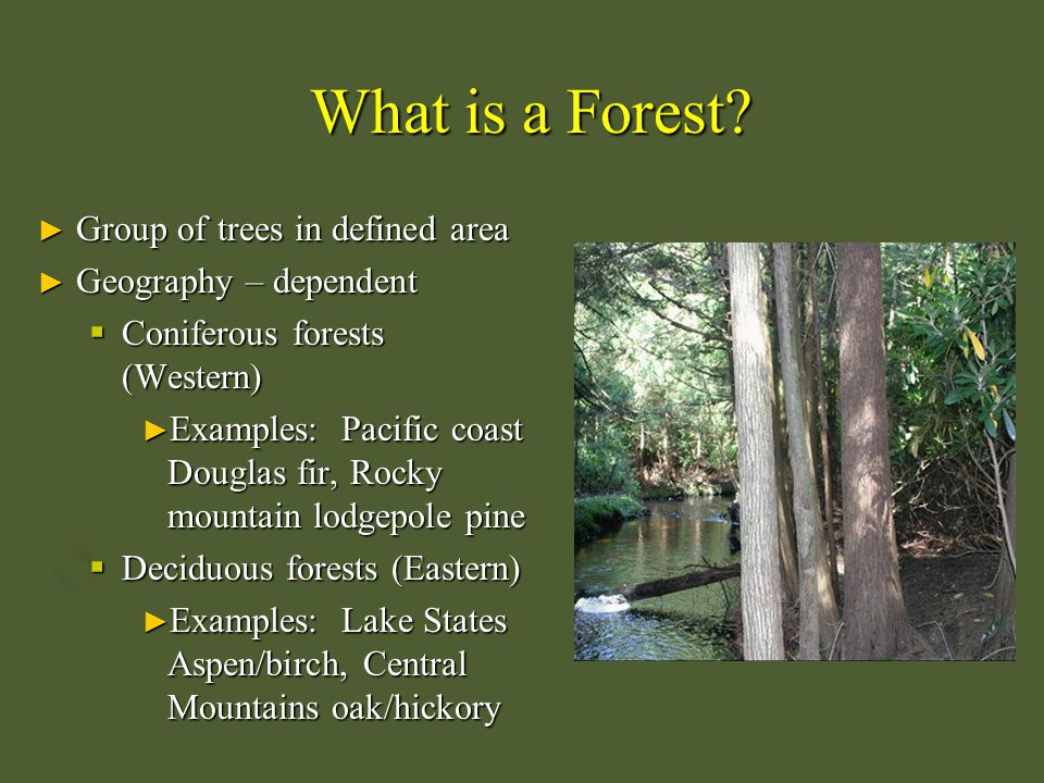 Forest Fragmentation ► Transformation of a large expanse of forest into a number of smaller patches of smaller total area, which are isolated from one another by a matrix of habitats unlike the original.