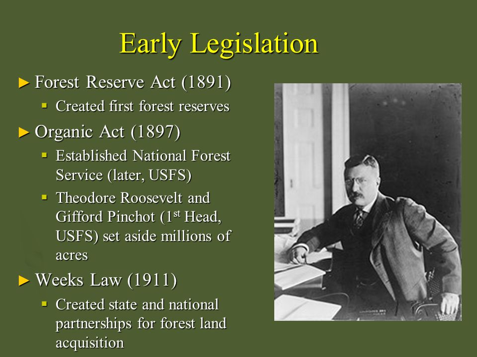 Other Legislation ► Multiple Use and Sustained Yield Act (1960)  Forests may be managed for wildlife and other uses ► National Environmental Protection Act (1969)  Environmental Impact Statements required ► Forest Rangeland Renewable Resources Planning Act (1974)  Coordinated activities on federal lands including wildlife management