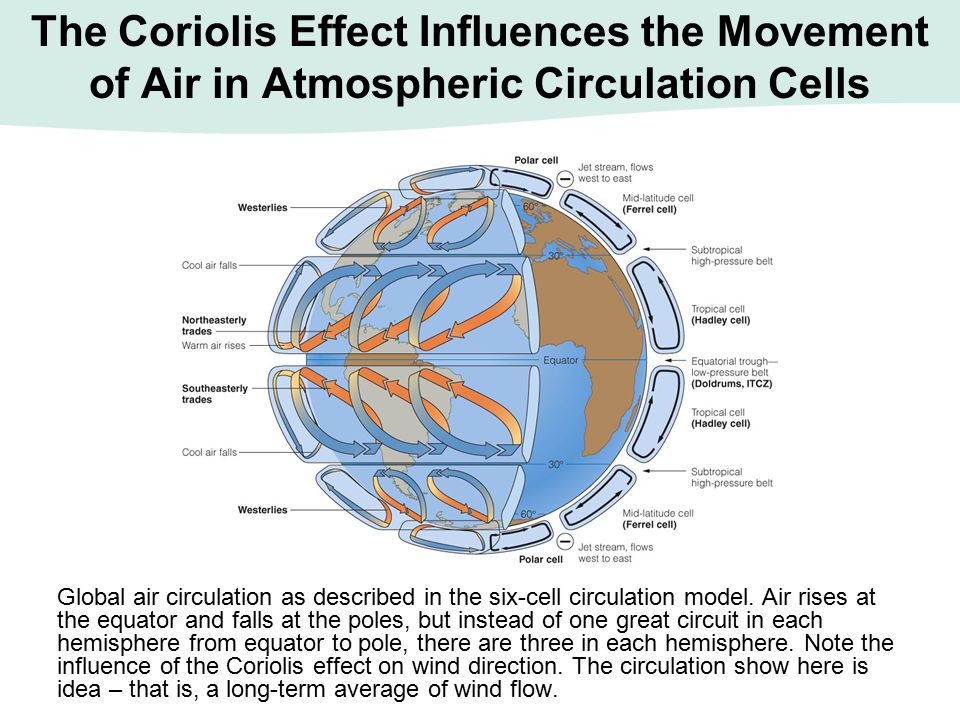 The Coriolis Effect Influences the Movement of Air in Atmospheric Circulation Cells Global air circulation as described in the six-cell circulation mo