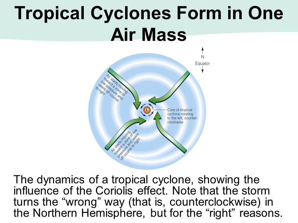 The dynamics of a tropical cyclone, showing the influence of the Coriolis effect.