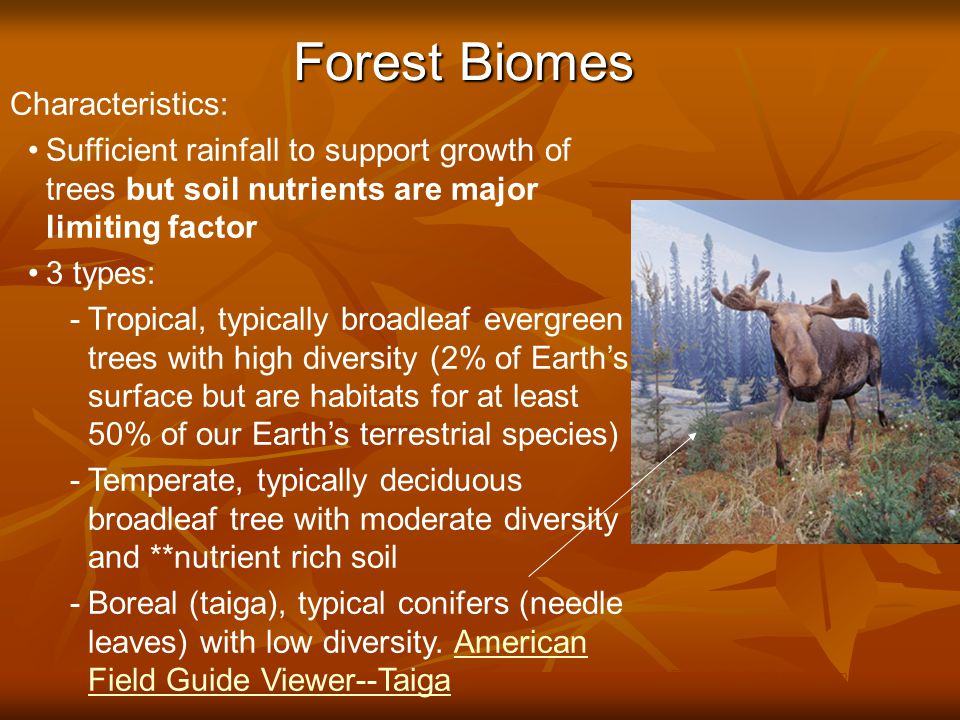 Forest Biomes © Brooks/Cole Publishing Company / ITP Characteristics: Sufficient rainfall to support growth of trees but soil nutrients are major limiting factor 3 types: -Tropical, typically broadleaf evergreen trees with high diversity (2% of Earth's surface but are habitats for at least 50% of our Earth's terrestrial species) -Temperate, typically deciduous broadleaf tree with moderate diversity and **nutrient rich soil -Boreal (taiga), typical conifers (needle leaves) with low diversity.