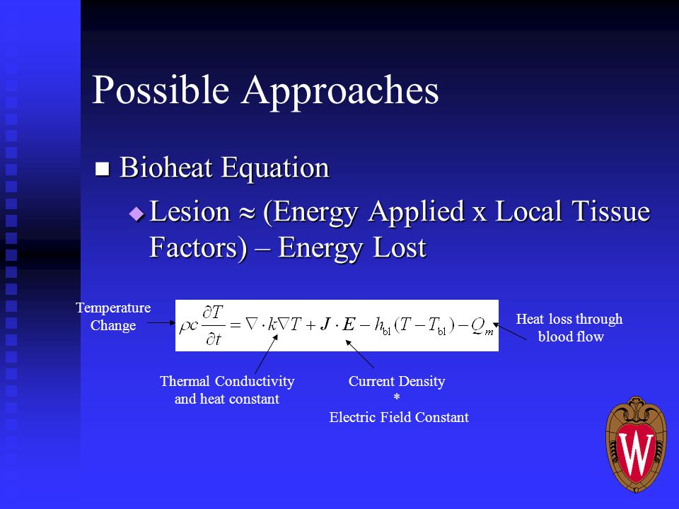 Possible Approaches Bioheat Equation Bioheat Equation  Lesion  (Energy Applied x Local Tissue Factors) – Energy Lost Temperature Change Thermal Conductivity and heat constant Current Density * Electric Field Constant Heat loss through blood flow