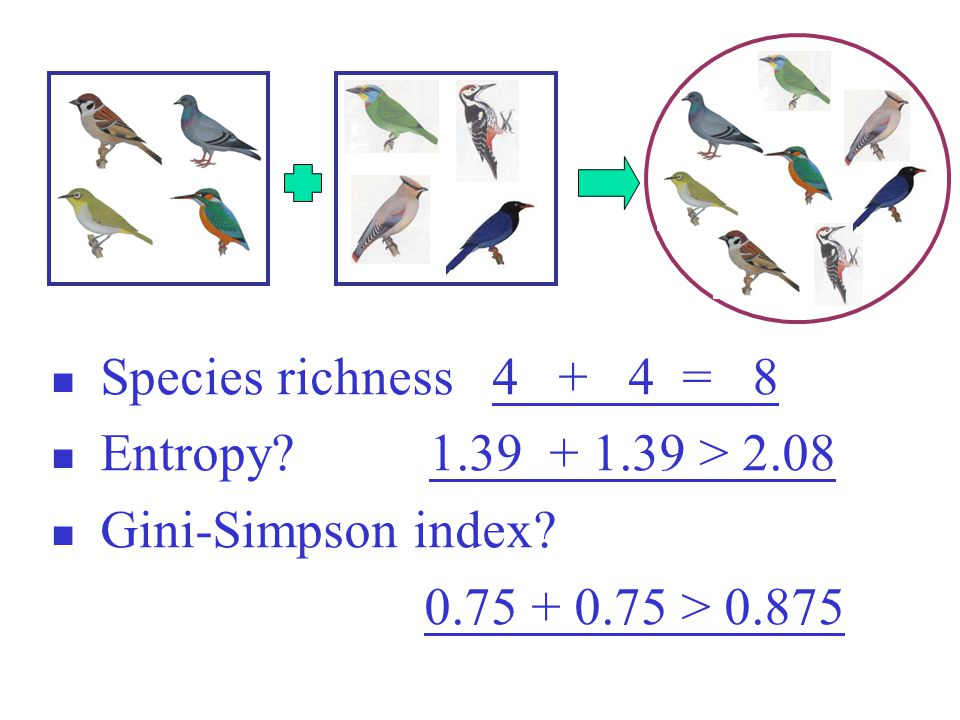 Species richness 4 + 4 = 8 Entropy? 1.39 + 1.39 > 2.08 Gini-Simpson index? 0.75 + 0.75 > 0.875