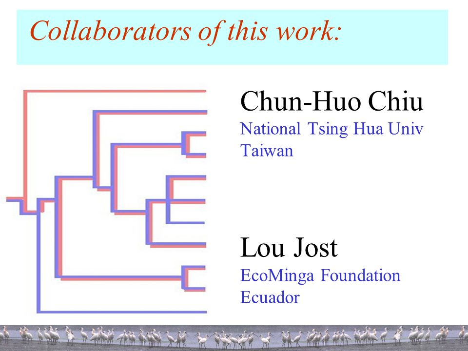 Collaborators of this work: Chun-Huo Chiu National Tsing Hua Univ Taiwan Lou Jost EcoMinga Foundation Ecuador