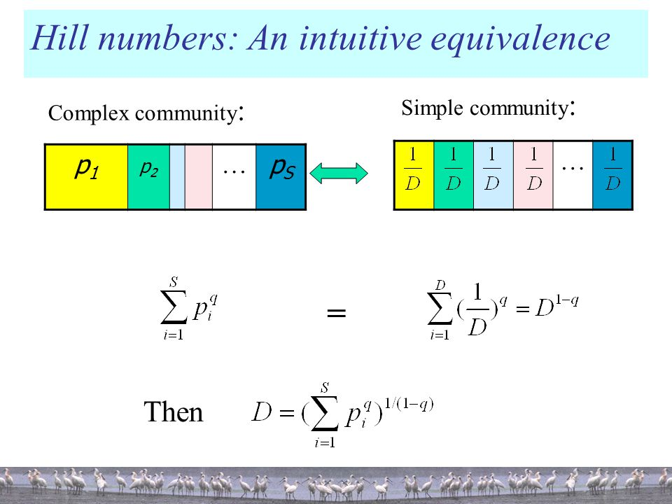 Hill numbers: An intuitive equivalence p1p1 p2p2 … pSpS … Complex community : = Then Simple community :