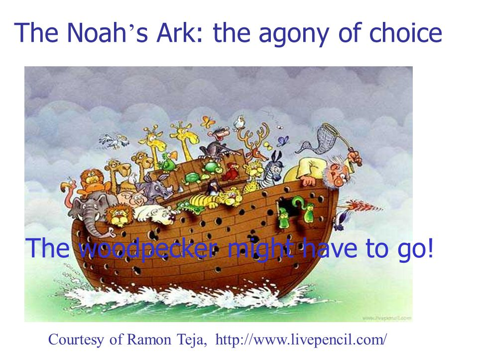 The Noah ' s Ark: the agony of choice The woodpecker might have to go.