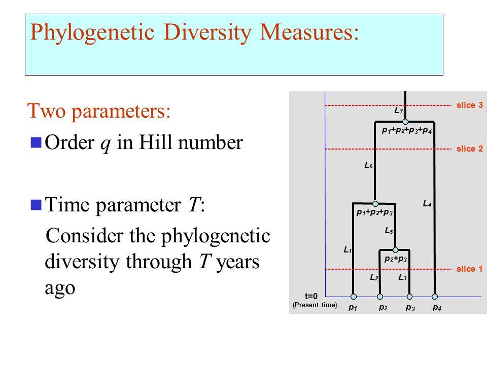 Phylogenetic Diversity Measures: Two parameters: Order q in Hill number Time parameter T: Consider the phylogenetic diversity through T years ago t=0 (Present time ) p 1 +p 2 3 4 p 1 2 3 p 2 3 p 1 p 2 p 3 p 4 slice 1 slice 2 slice 3 L 1 L 2 L 3 L 4 L 5 L 6 L 7