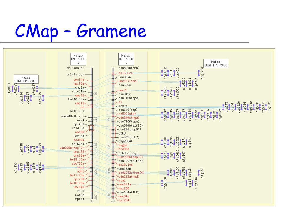 CMap – Gramene