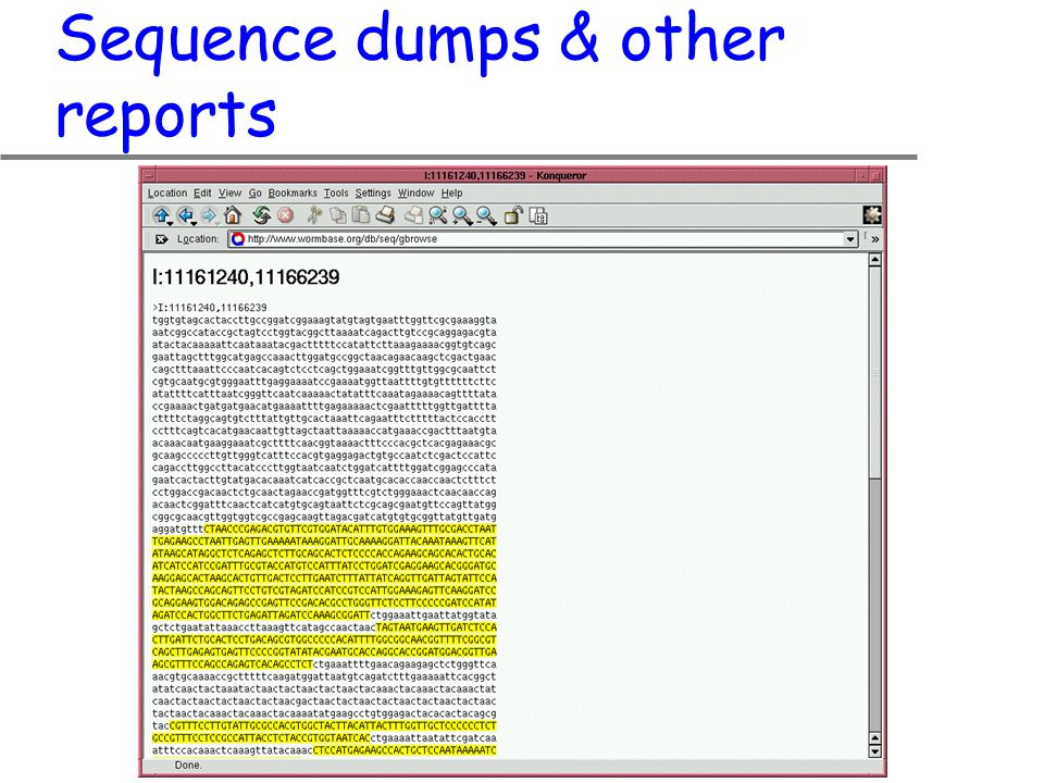 Sequence dumps & other reports