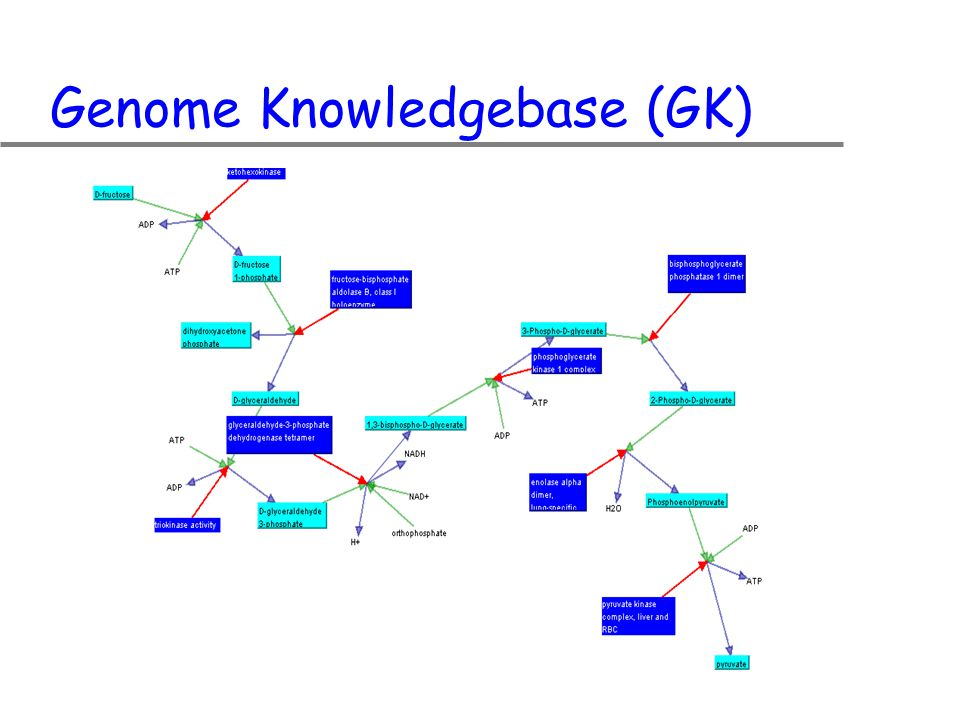 Genome Knowledgebase (GK)