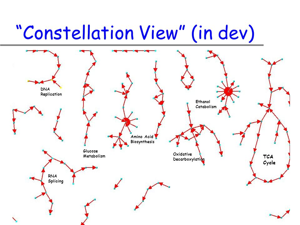 Constellation View (in dev) TCA Cycle Oxidative Decarboxylation Amino Acid Biosynthesis Ethanol Catabolism Glucose Metabolism RNA Splicing DNA Replication