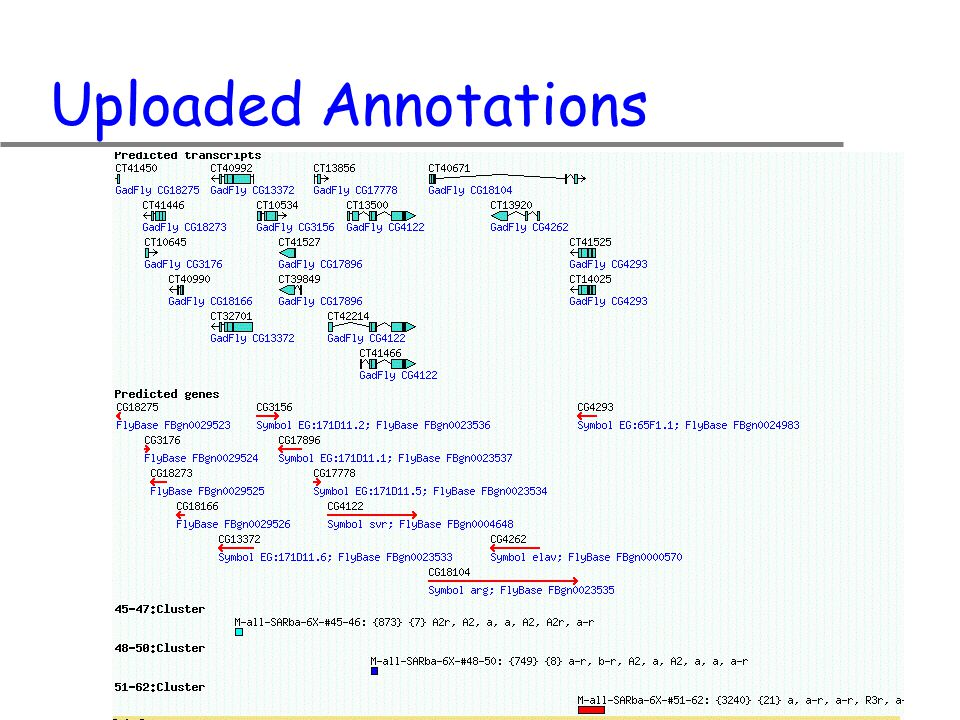 Uploaded Annotations