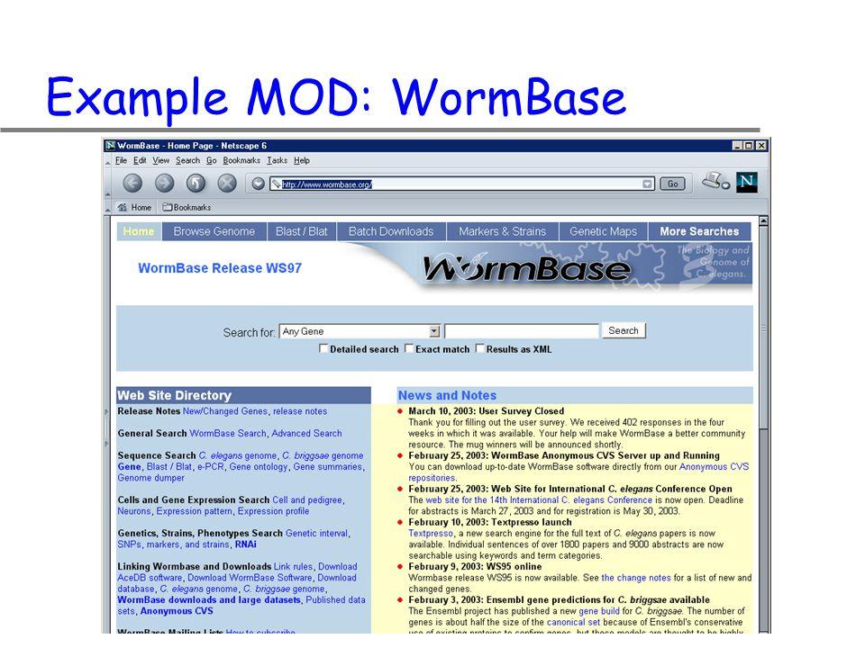 Example MOD: WormBase