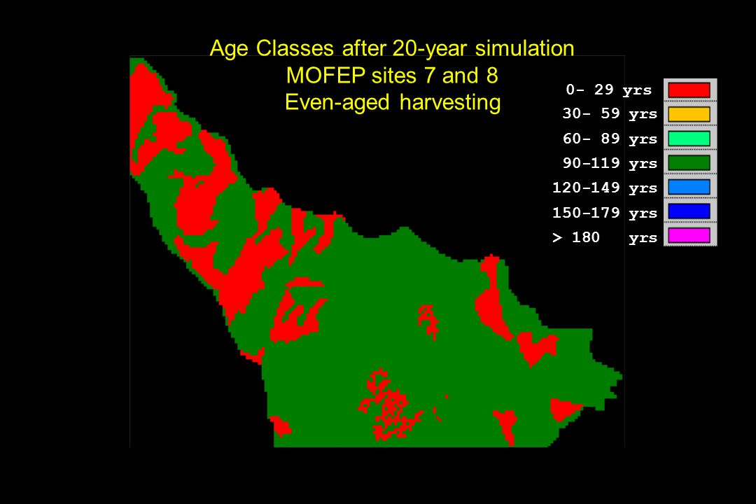Age Classes after 20-year simulation MOFEP sites 7 and 8 Even-aged harvesting 0- 29 yrs 30- 59 yrs 60- 89 yrs 90-119 yrs 120-149 yrs 150-179 yrs > 180 yrs