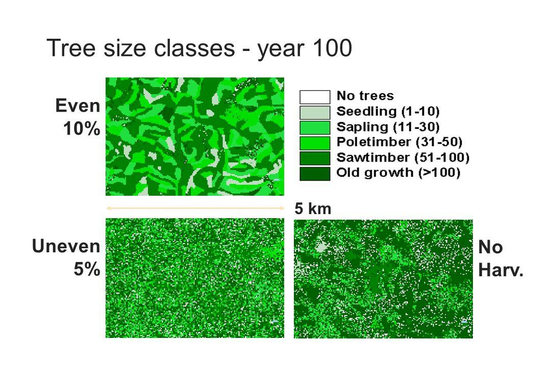 Tree size classes - year 100 No Harv. Even 10% Uneven 5% 5 km