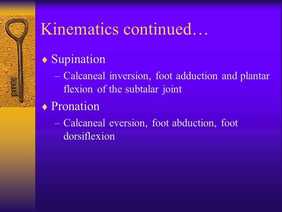 Kinematics continued…  Supination –Calcaneal inversion, foot adduction and plantar flexion of the subtalar joint  Pronation –Calcaneal eversion, foot abduction, foot dorsiflexion