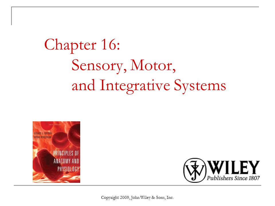 Copyright 2009, John Wiley & Sons, Inc. Chapter 16: Sensory, Motor, and Integrative Systems