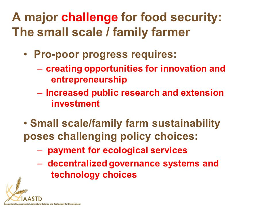 A major challenge for food security: The small scale / family farmer Pro-poor progress requires: –creating opportunities for innovation and entreprene