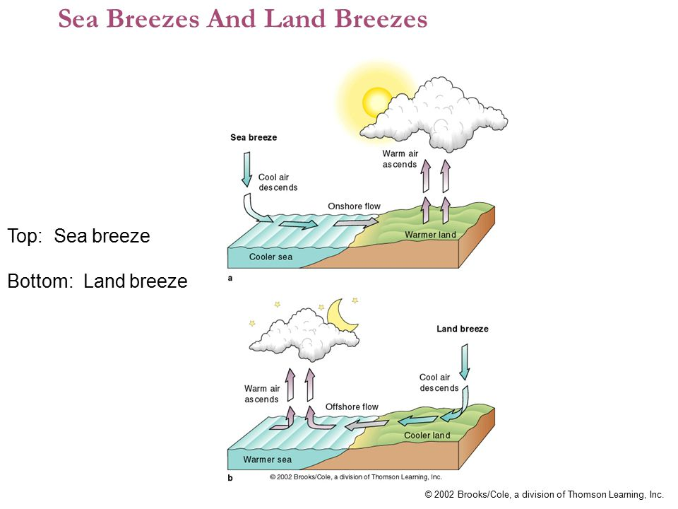 © 2002 Brooks/Cole, a division of Thomson Learning, Inc. Sea Breezes And Land Breezes Top: Sea breeze Bottom: Land breeze