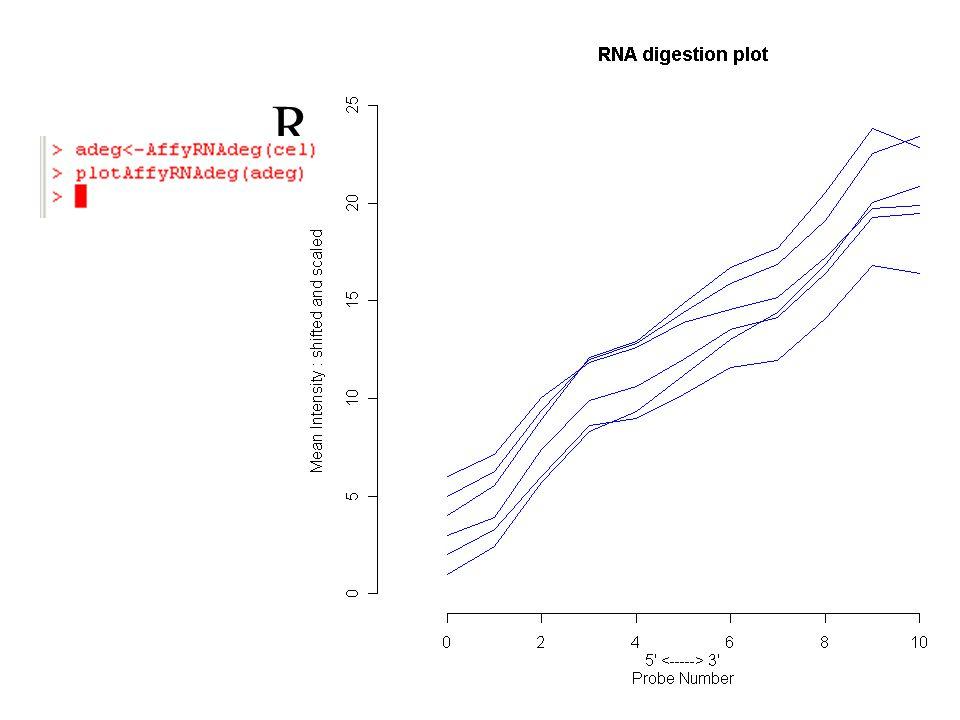 RNA degradation