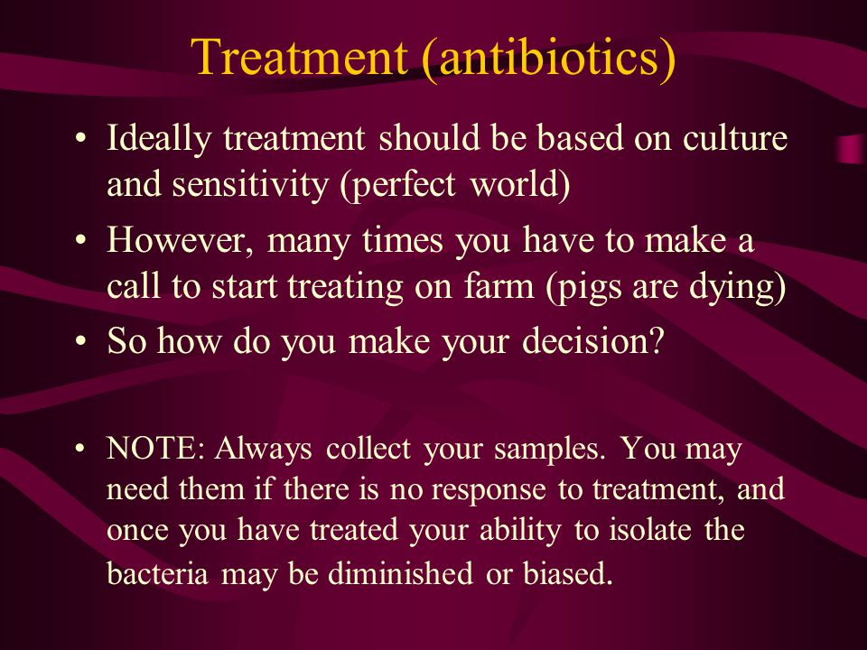 Treatment (antibiotics) Ideally treatment should be based on culture and sensitivity (perfect world) However, many times you have to make a call to st