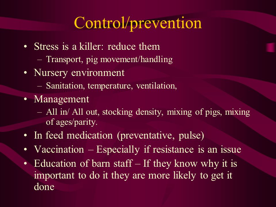 Control/prevention Stress is a killer: reduce them –Transport, pig movement/handling Nursery environment –Sanitation, temperature, ventilation, Manage