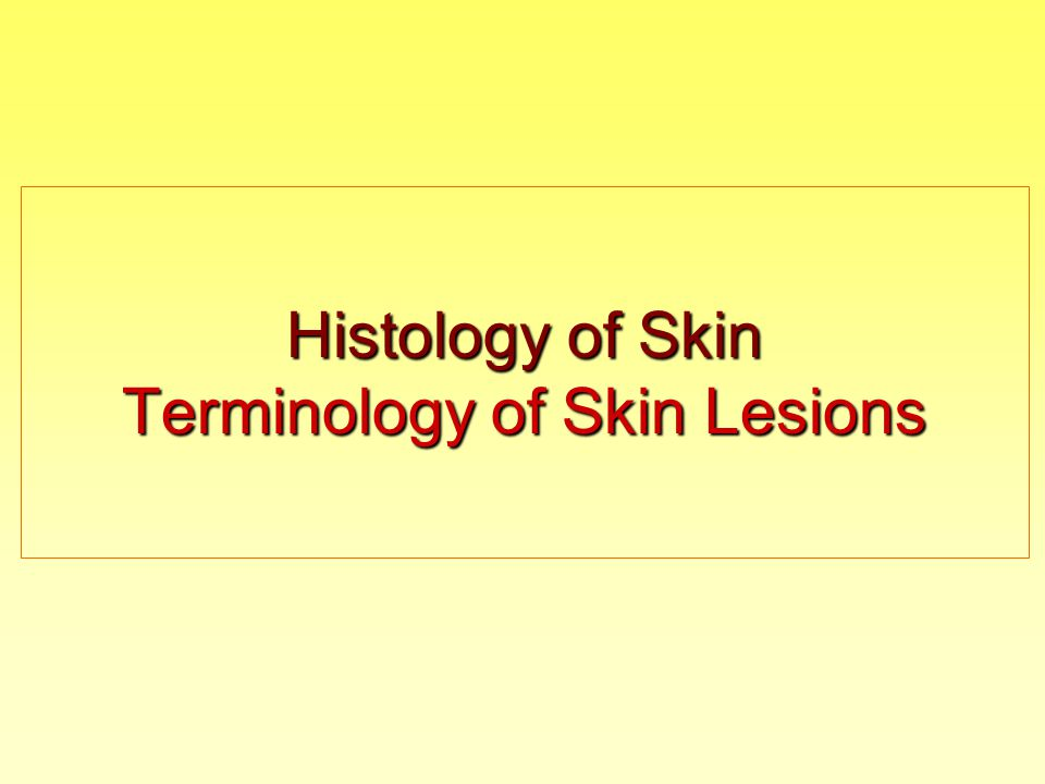 Describing of Lesions:  sites involved and distribution (a-symmetrical, predilection sites; arrangement, single or multiple)  size (mm, cm)  shape (round, oval, irregular, pedunculated…)  surface features (smooth, rough, shiny, dull, squamous, uneven…)  demarcation - border of lesion (well defined or circumscribed, poorly defined…)  color (pink, red, purple, white, brown, yellowish…)  consistency (soft, firm, normal, hard, elastic…)  surroundings (with inflammation, normal…)