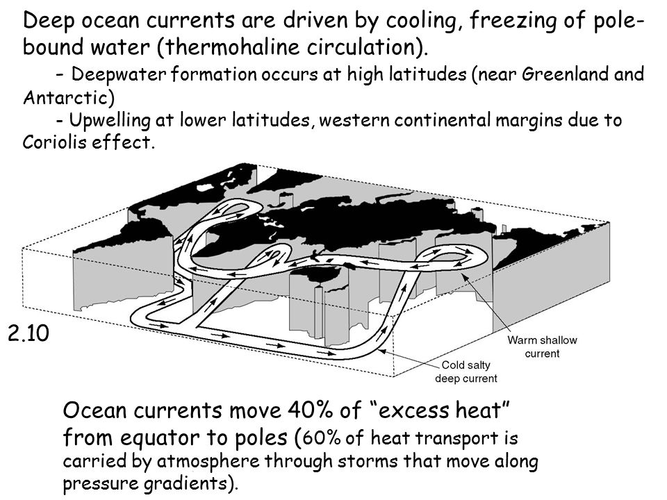 Deep ocean currents are driven by cooling, freezing of pole- bound water (thermohaline circulation).
