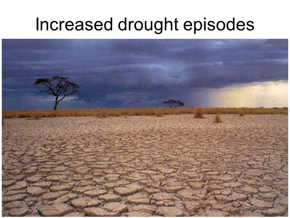Increased drought episodes