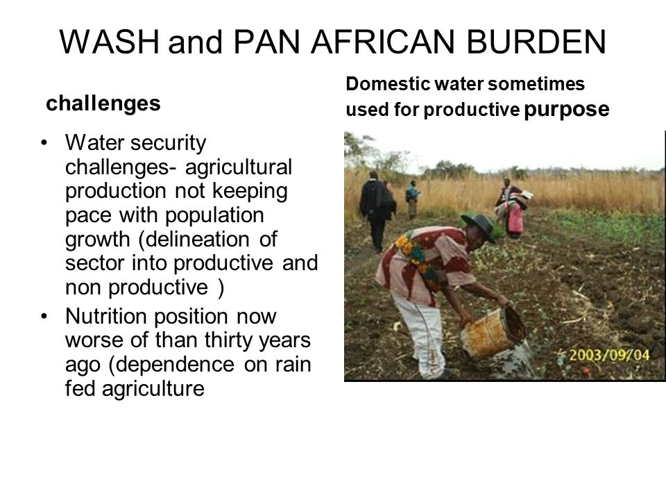 WASH and PAN AFRICAN BURDEN challenges Water security challenges- agricultural production not keeping pace with population growth (delineation of sector into productive and non productive ) Nutrition position now worse of than thirty years ago (dependence on rain fed agriculture Domestic water sometimes used for productive purpose