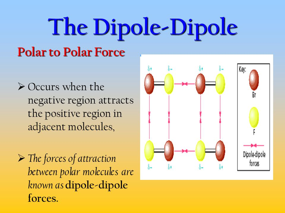 The Dipole-Dipole Polar to Polar Force  Occurs when the negative region attracts the positive region in adjacent molecules,  The forces of attractio