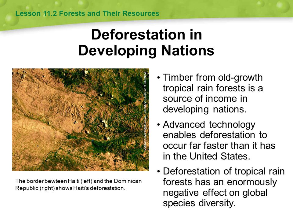 Deforestation in Developing Nations Timber from old-growth tropical rain forests is a source of income in developing nations. Advanced technology enab
