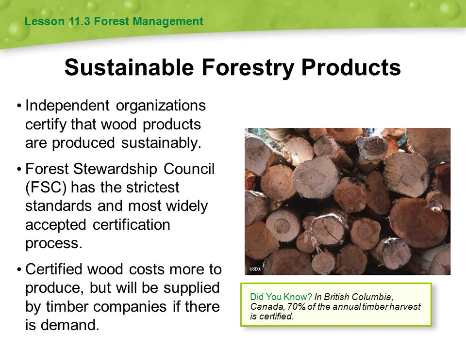 Sustainable Forestry Products Independent organizations certify that wood products are produced sustainably. Forest Stewardship Council (FSC) has the