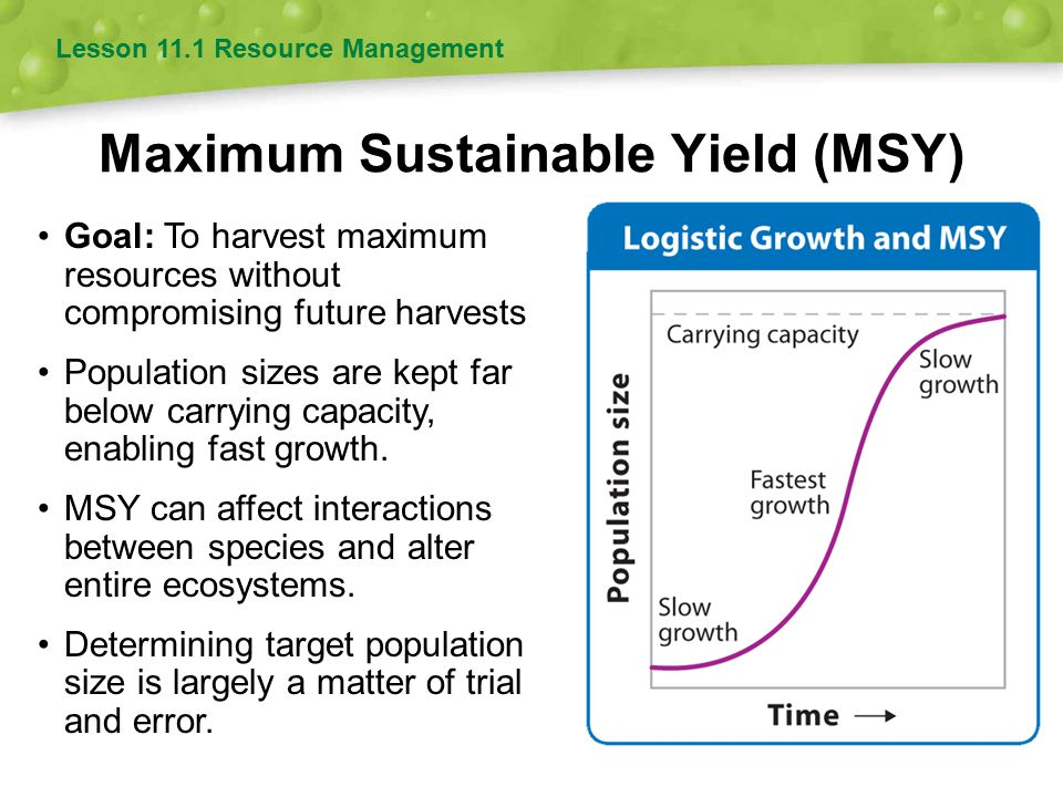 Maximum Sustainable Yield (MSY) Goal: To harvest maximum resources without compromising future harvests Population sizes are kept far below carrying c