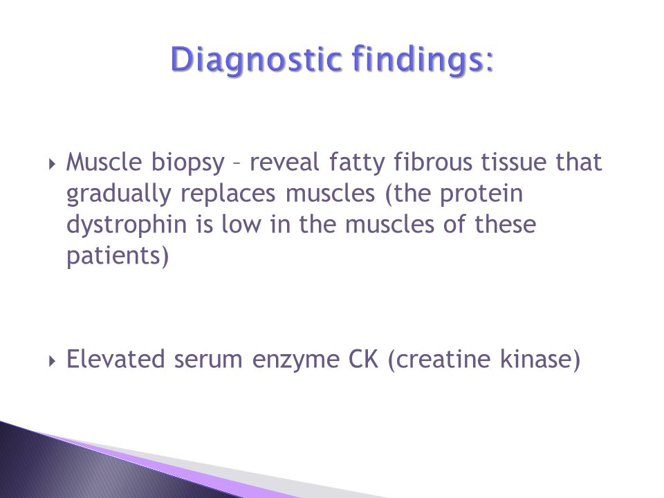  Muscle biopsy – reveal fatty fibrous tissue that gradually replaces muscles (the protein dystrophin is low in the muscles of these patients)  Elevated serum enzyme CK (creatine kinase)
