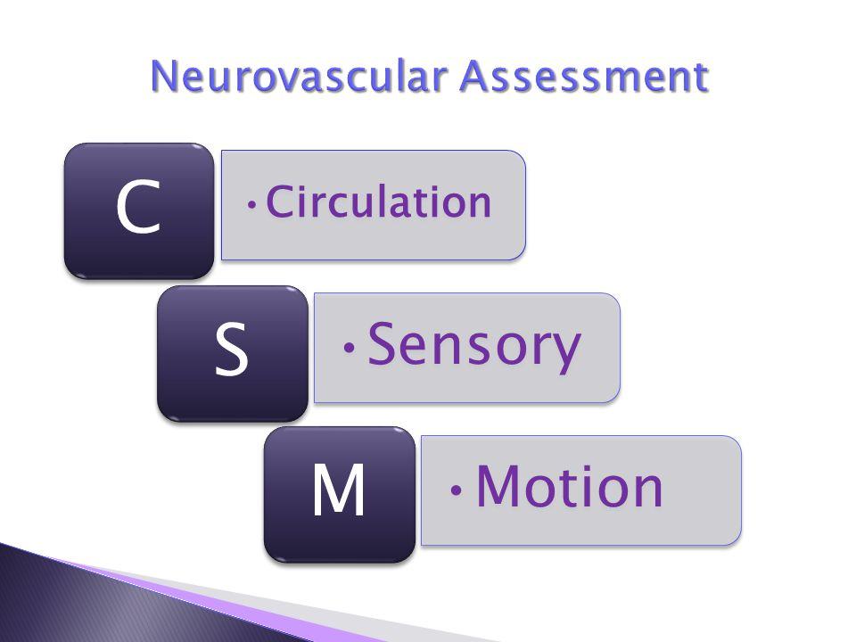 Circulation C Sensory S Motion M