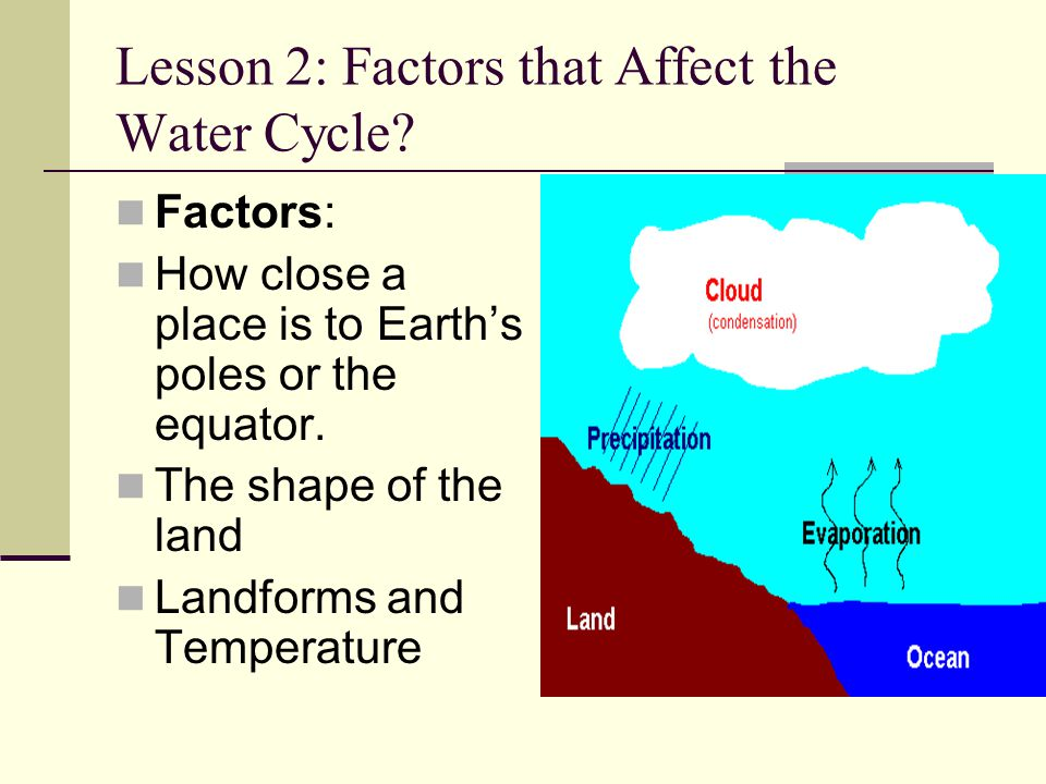 Lesson 2: Factors that Affect the Water Cycle? Factors: How close a place is to Earth's poles or the equator. The shape of the land Landforms and Temp