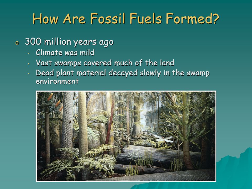 How Are Fossil Fuels Formed.