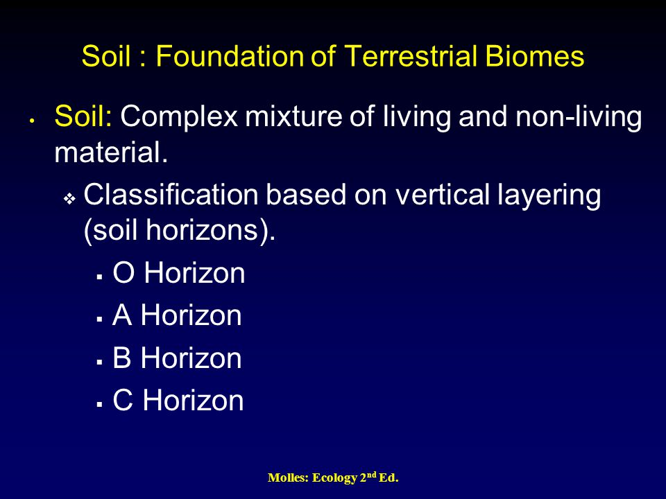 Soil : Foundation of Terrestrial Biomes Soil: Complex mixture of living and non-living material.  Classification based on vertical layering (soil hor