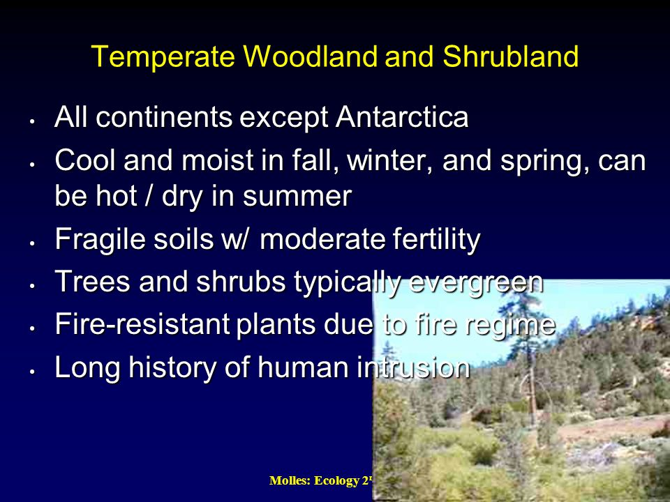 Molles: Ecology 2 nd Ed. Temperate Woodland and Shrubland All continents except Antarctica All continents except Antarctica Cool and moist in fall, wi