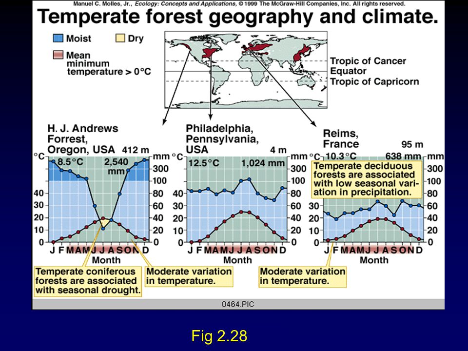 Molles: Ecology 2 nd Ed. Fig 2.28