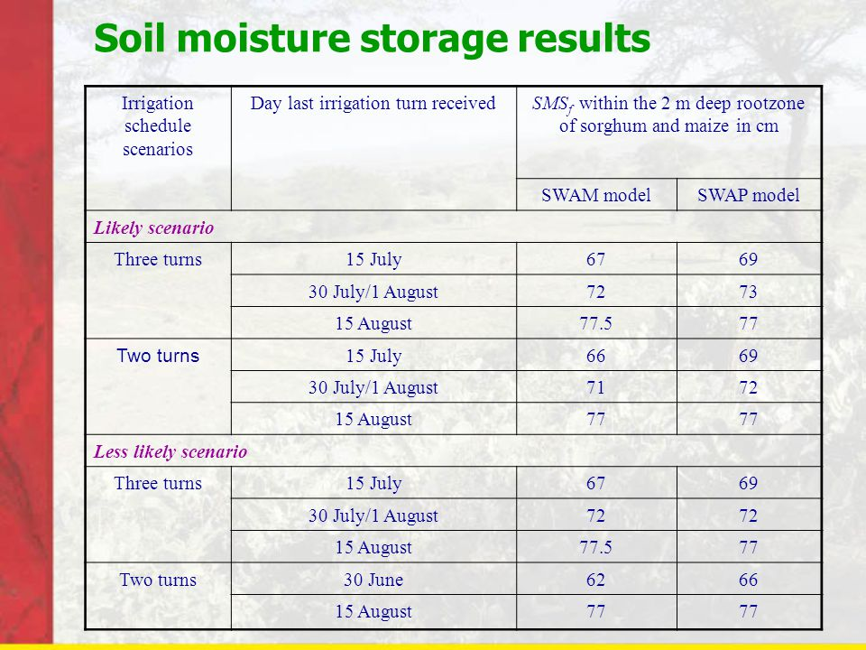 Soil moisture storage results Irrigation schedule scenarios Day last irrigation turn receivedSMS f within the 2 m deep rootzone of sorghum and maize in cm SWAM modelSWAP model Likely scenario Three turns15 July6769 30 July/1 August7273 15 August77.577 Two turns 15 July6669 30 July/1 August7172 15 August77 Less likely scenario Three turns15 July6769 30 July/1 August72 15 August77.577 Two turns30 June6266 15 August77