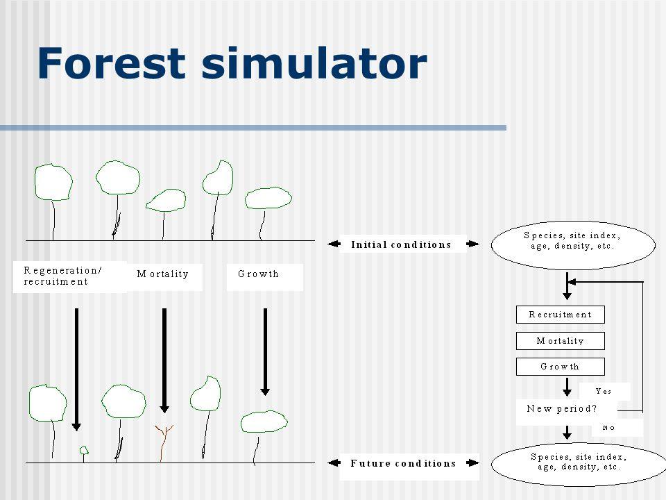 Forest simulator