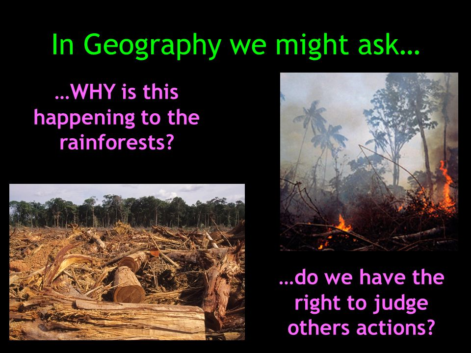 In Geography we might ask… …WHY is this happening to the rainforests.