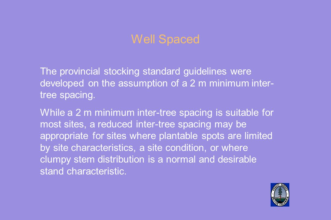 Well Spaced The provincial stocking standard guidelines were developed on the assumption of a 2 m minimum inter- tree spacing.