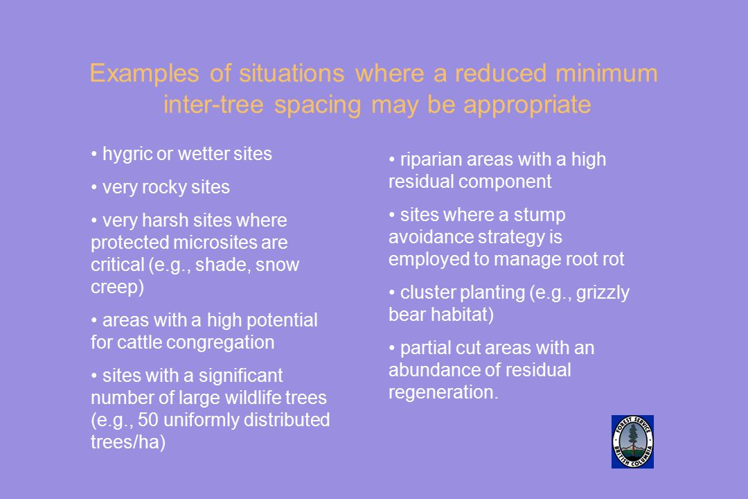 Examples of situations where a reduced minimum inter-tree spacing may be appropriate hygric or wetter sites very rocky sites very harsh sites where pr