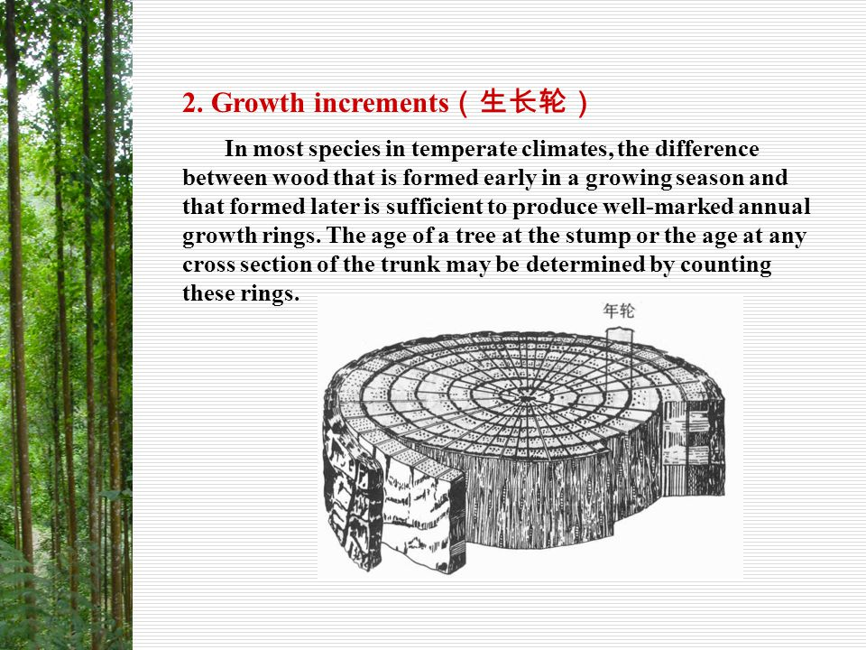 2-1 Annual rings of normal type ( 正常年轮 ) Conceptions of growth increments and annual rings The former is the layer of wood produced in one growth season, and the latter is the layer of wood produced in one year.
