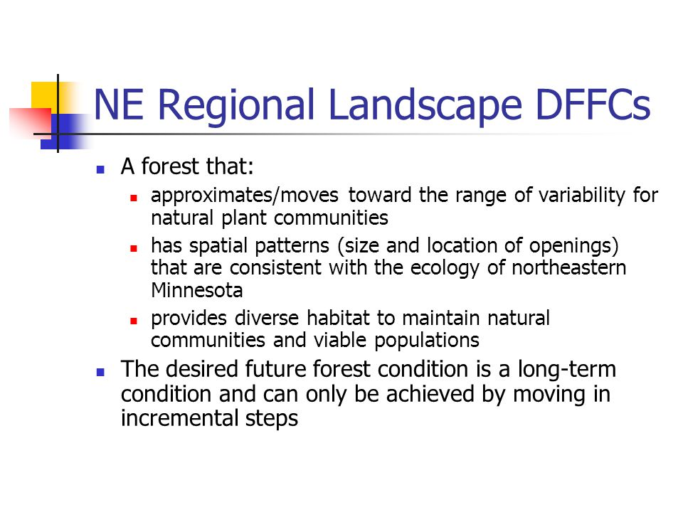 NE Regional Landscape DFFCs A forest that: approximates/moves toward the range of variability for natural plant communities has spatial patterns (size and location of openings) that are consistent with the ecology of northeastern Minnesota provides diverse habitat to maintain natural communities and viable populations The desired future forest condition is a long-term condition and can only be achieved by moving in incremental steps